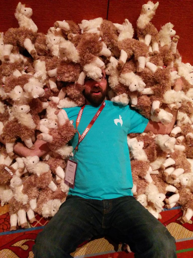 AaronSheehan: Llamavalanche! #ImagineCommerce http://t.co/7bF2M09zui
