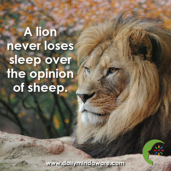 """PostPlanner On Twitter: """"A Lion Never Loses Sleep Over The"""