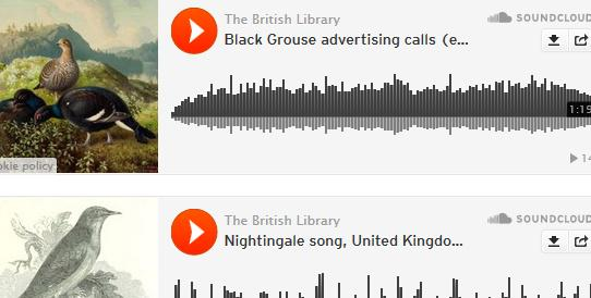 200 top quality British nature recordings from @britishlibrary free on SoundCloud http://t.co/G4mSiYKFKI http://t.co/71eVGbD9Te