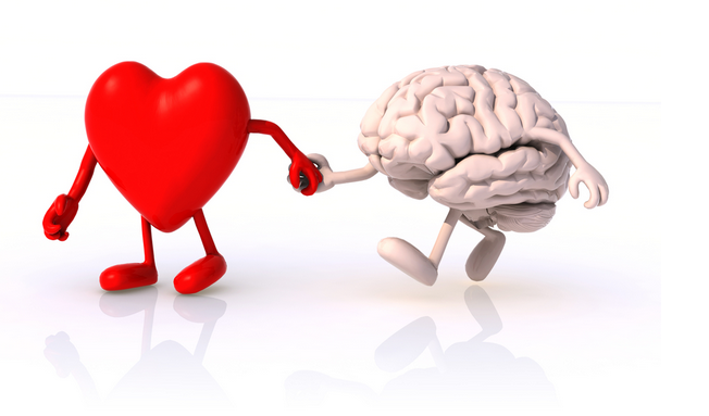 a3-  #usedchat The mind follows the heart! http://t.co/VG97NcfCUV