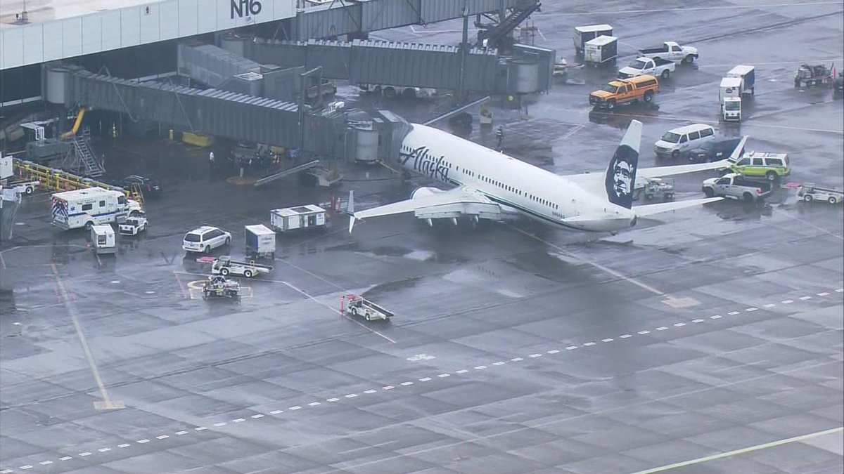Alaska Airlines Flight Returns To Seattle After Pilot Hears 'Banging' In Cargo Hold