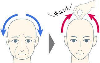 「頭皮 皮一枚」の画像検索結果