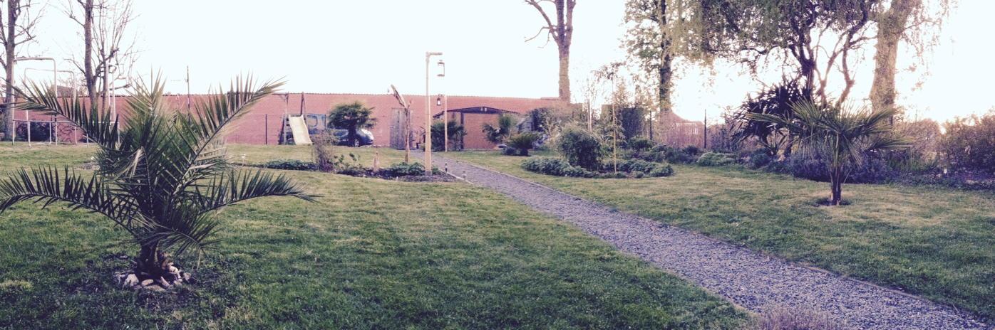 """Jardin """"La Palmeraie"""" à Renaix (B) - Page 3 CCksLPeWAAEkT1x"""