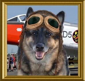 Wear goggles. Follow/use #TheAviators hash tag ea tweet 2b seen. Capt. Miss Lucky @lucky_GSD is your Flight Leader. http://t.co/i2BwzAcoxL