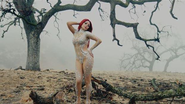 5bae5052f13de أثارت الفنانة اللبنانية هيفا وهبي عبر طرح أغنية