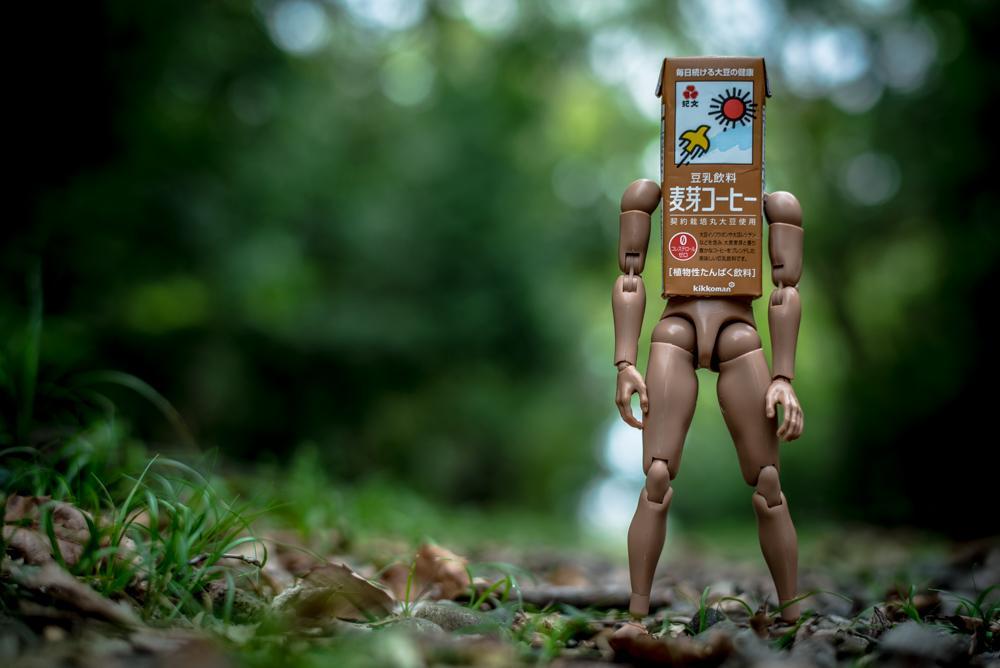 可愛いダンボーもオサレなドールも持ってないので麦芽くん人形こさえてロケハン行ってきました。 pic.twitter.com/PY3KRr2S6d