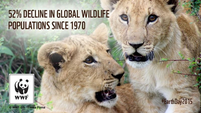 Wildlife populations have declined by an average of 52% in 40 years. #EarthDay2015. RT to show you care! http://t.co/mRnZ2tsqiX