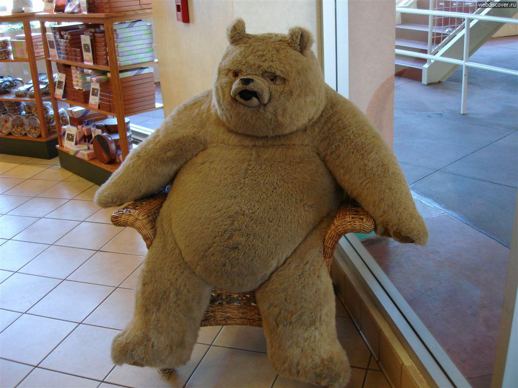 Картинки, картинки с плюшевым медвежонком прикольные