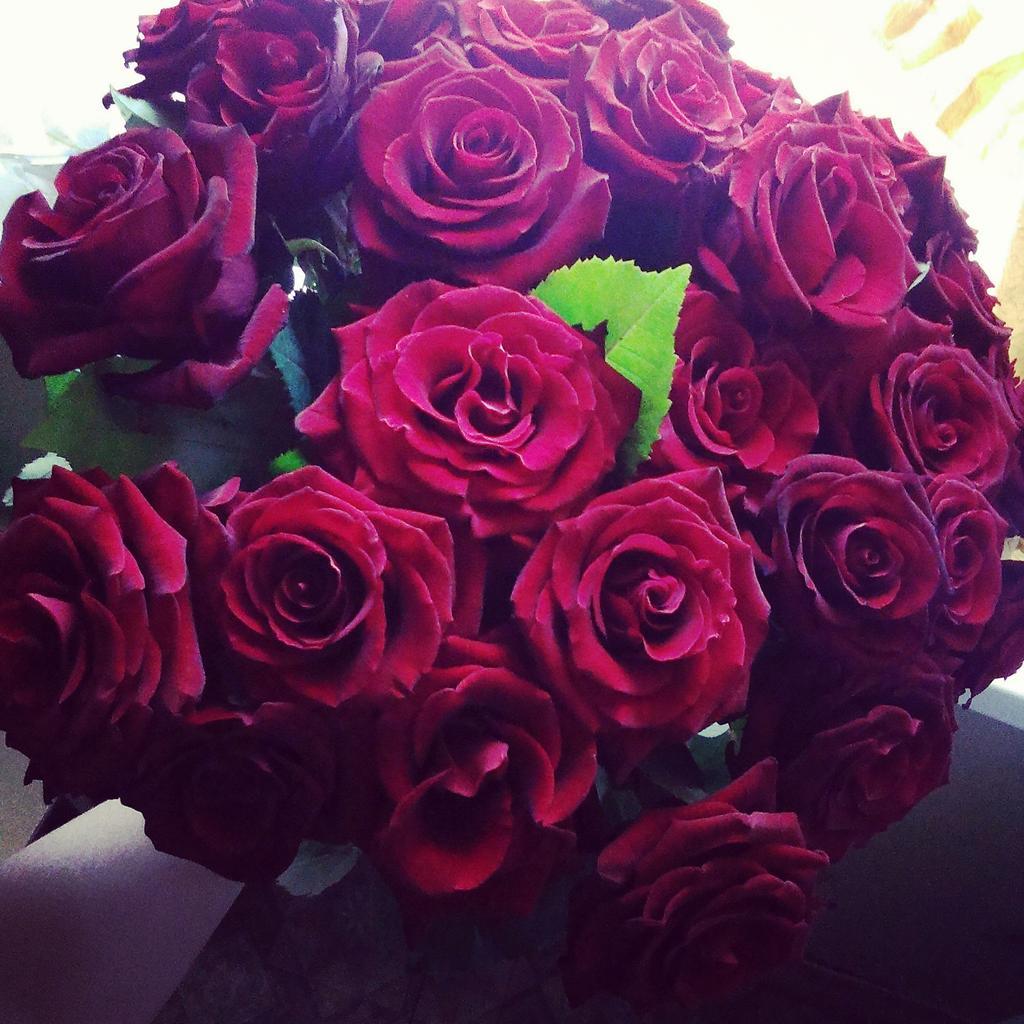 Букеты цветов на аву, оптом ценам