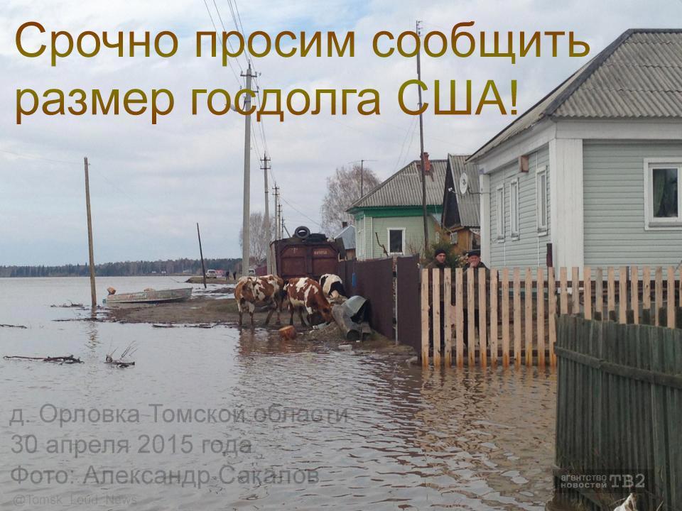 ГПУ назначила Носенко прокурором Черниговской области - Цензор.НЕТ 231