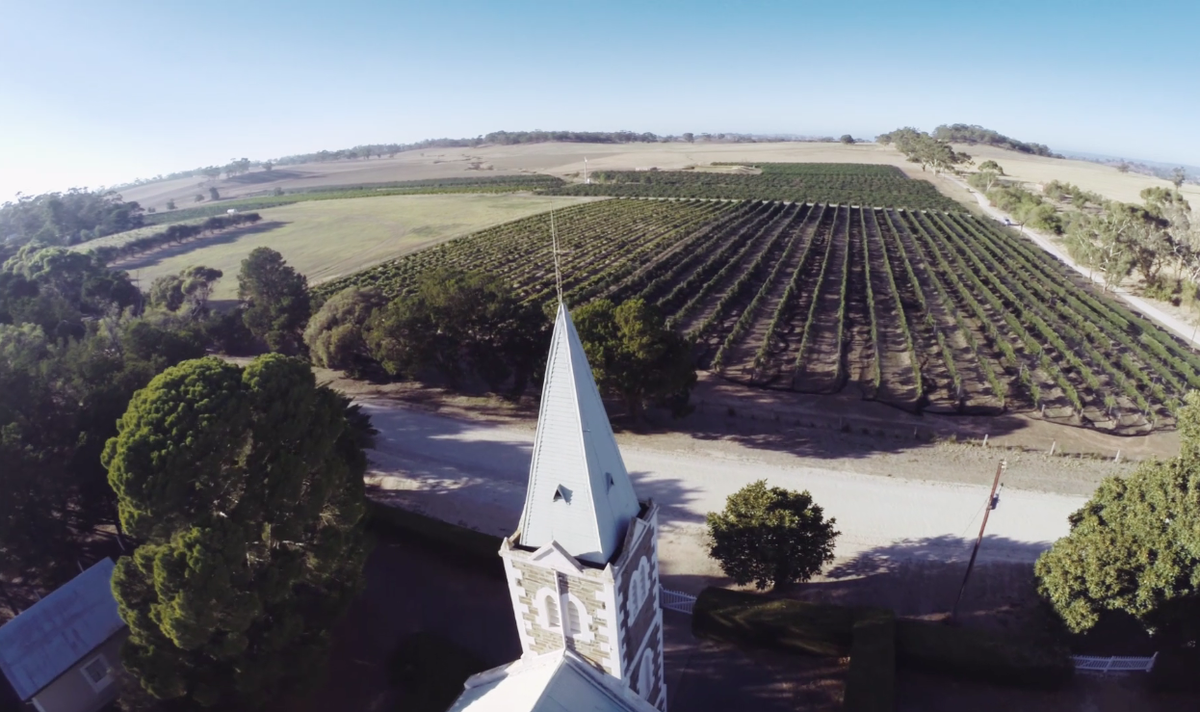 Spectacular bird's-eye view of #HillofGrace vineyard video https://t.co/QEZYhMehJA #HofG10 WineDiviner?@russellcrowe http://t.co/ftqIoF9sVY