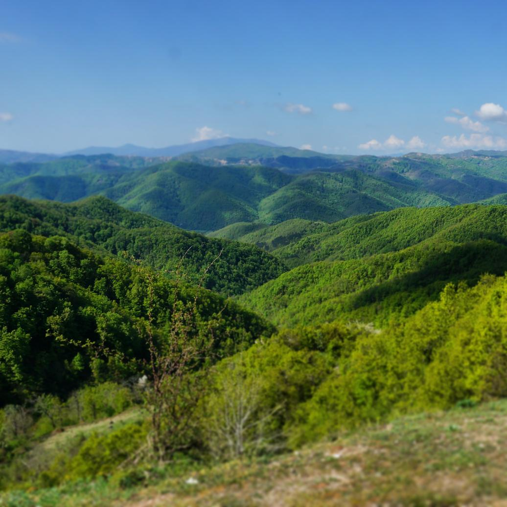 And this view is everywhere I look: the rippling Rhodopi Mountains. #LPinGreece http://t.co/qW2KpqhaFJ