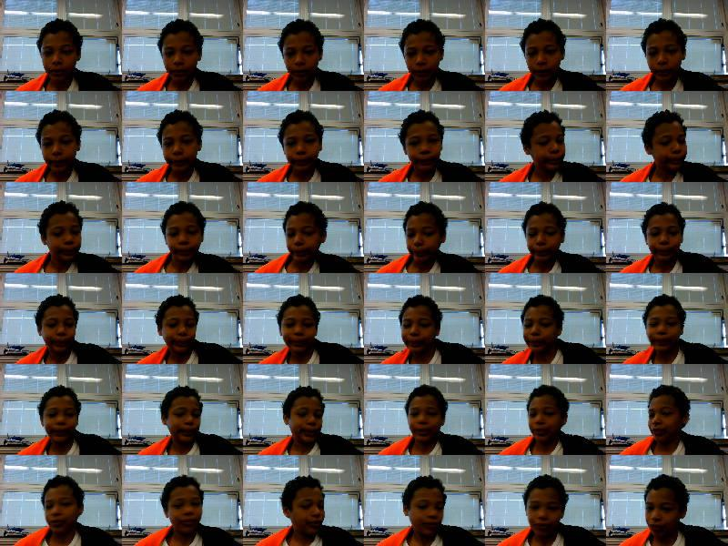 Webcamtoy windows