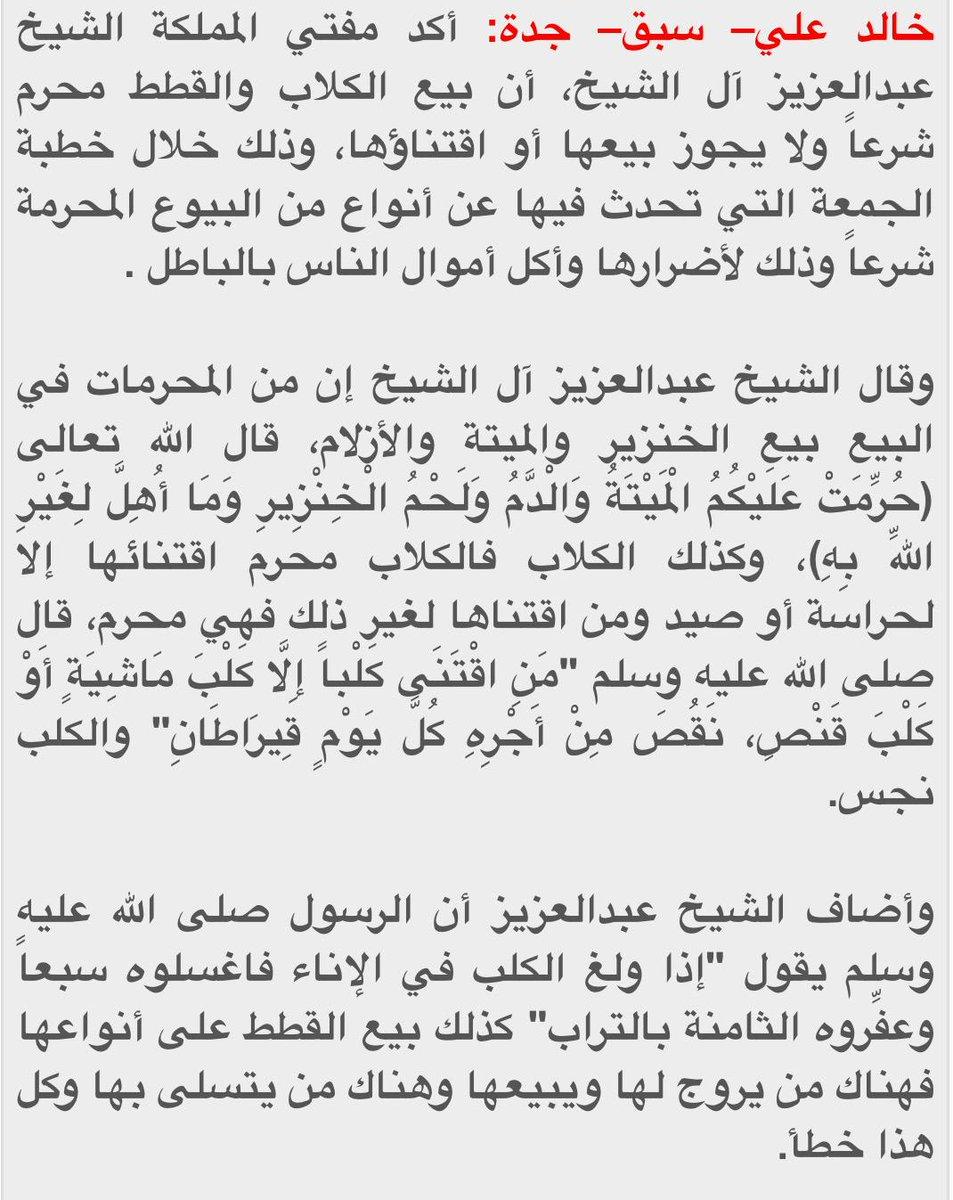 خبر عاجل On Twitter سماحة المفتي بيع الكلاب والقطط حرام وخطأ سبق السعودية Http T Co Y8fkkgihlu
