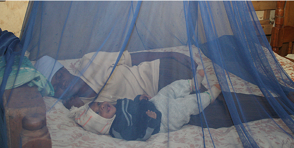How to prevent dengue during monsoons- Sleep in mosquito net