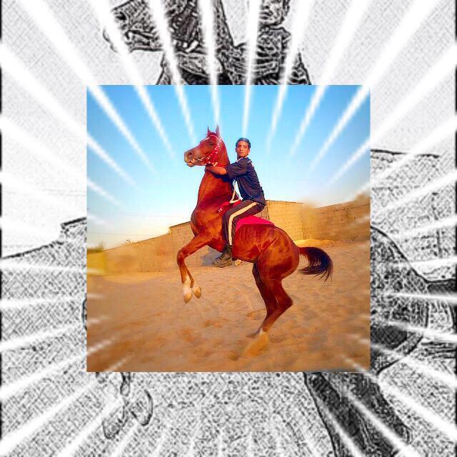 #لقطات لبعض من آستعراضي 🏇  #مربط_العليا #الخيل_العربي_الأصيل ..✨  #فرسان_الجوف #سكاكا_الجوف #الخيل #الجوف http://t.co/eEP05ScL7G