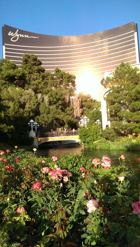 Leslie_Weller: Great hotel pick #ImagineCommerce and awesome weather too, with @Canto and @magento http://t.co/EYb8E8VR2p