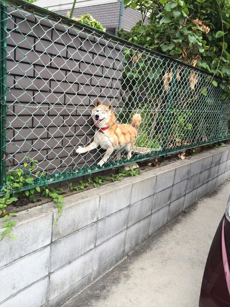 when u in a bad place but u keeping a positive outlook http://t.co/vaYeSOvNsk