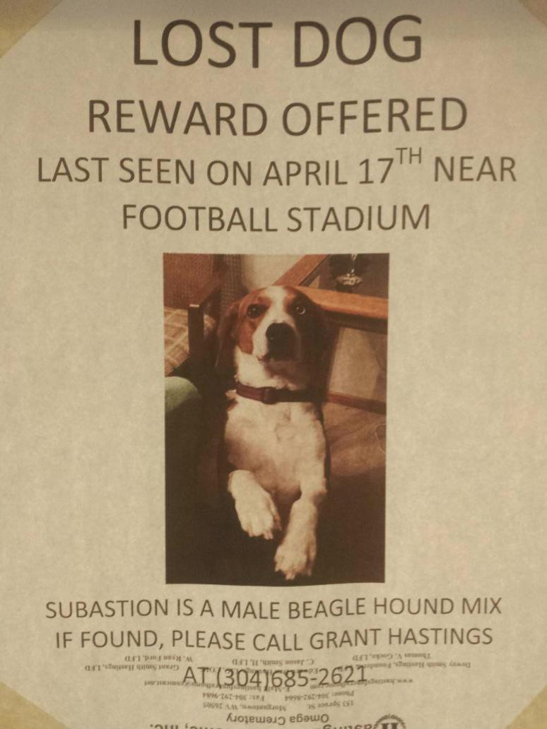 lost dog #morgantown http://t.co/AXugWyfmdl
