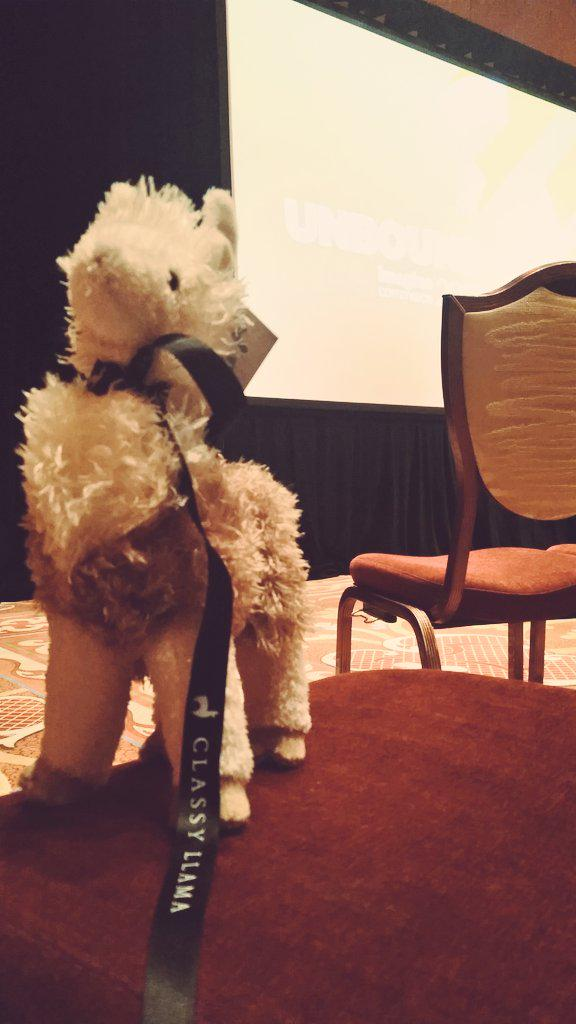 guido: This is one classy llama #ImagineCommerce http://t.co/VNA9yUBTym