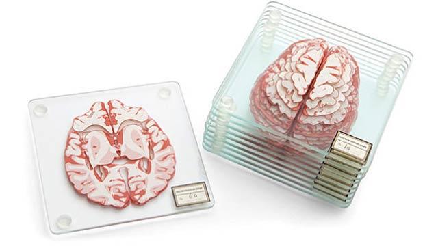 【ニュース&話題】人体の不思議展さながら、スライス脳みそコースター ~もろ脳! 脳丸出し!かなり好き嫌いが分かれそう~/GIZMODO  #インテリア