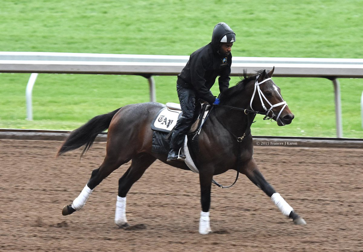 The 2yo Galileo/Rags to Riches colt, in training with Todd Pletcher, on the track at Keeneland on a rainy Wednesday. http://t.co/kQ6wv7KDer