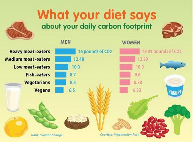 What Does Your Diet Say About Your Carbon Footprint Hint If You
