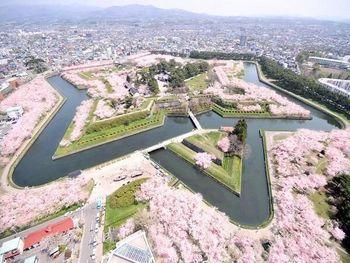 お花見のチャンスはまだあるよ!北海道・函館の「五稜郭」ならGWに桜が見れるよ♪kinarino.jp/cat8/11061 pic.twitter.com/3OKSGQKQVR