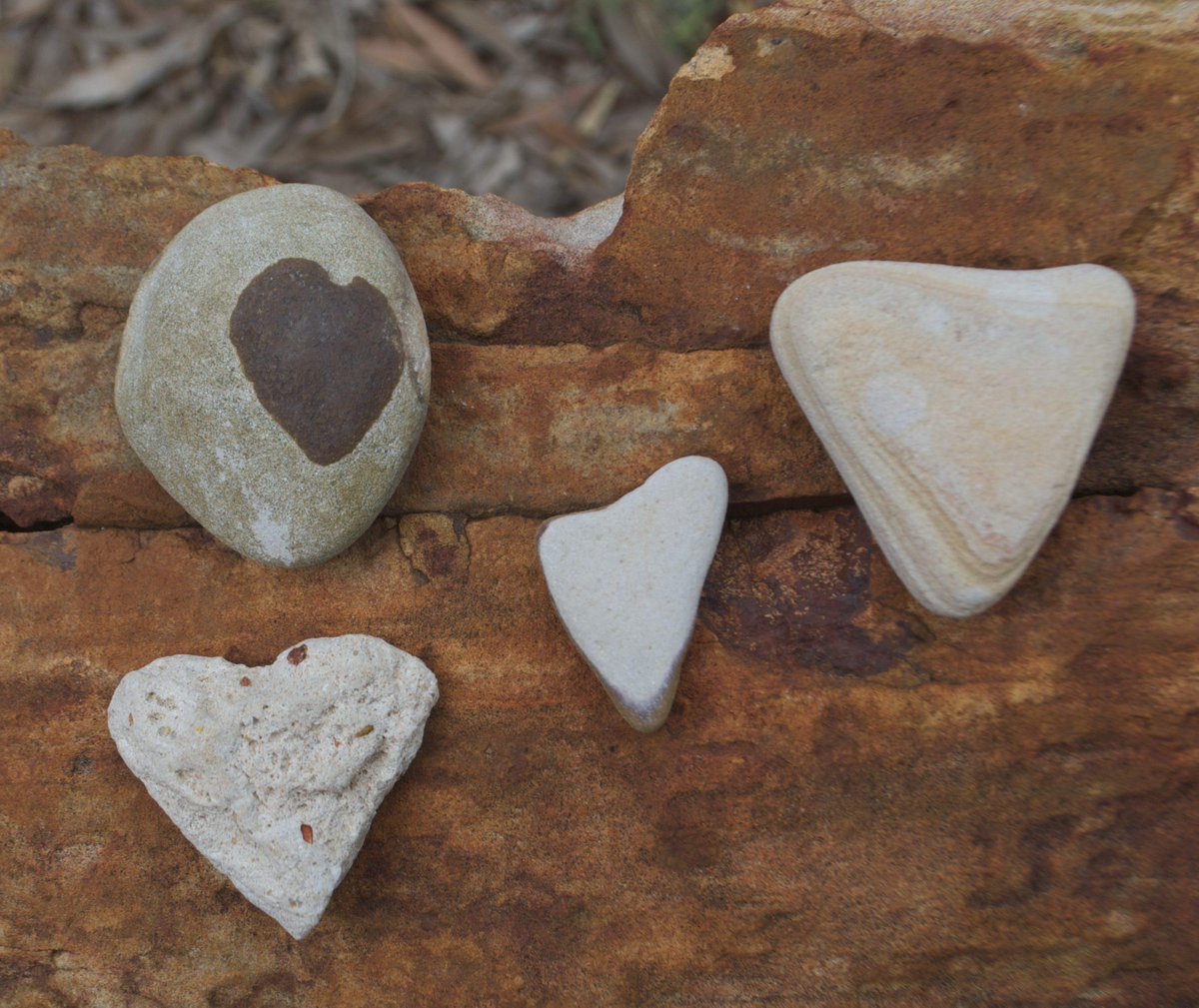 #heart-shaped pebbles from the #DinosaurCoast. We love you Broome! @implexidens #uq @Loyal2mal http://t.co/xrVIGi43hh
