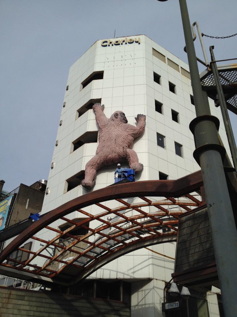 徳島市元町の元ドラックストア「チャーリー」のビルが解体中。目印になっていたゴリラも今日で無くなってしまうらしいので記念撮影。跡地がどうなるかはまだ未定みたい。市街地中心部空洞化が進みます。 pic.twitter.com/gc6vnU2JBK