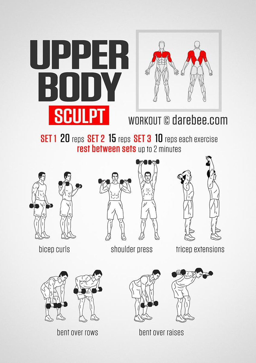 Upper Back Workout Chart For Men