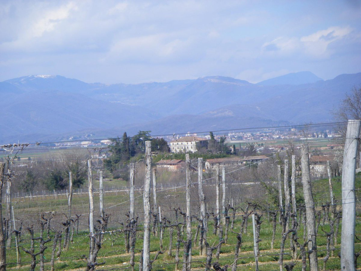 Agricoltura Friuli: investire tra eccellenze aziendali e green economy