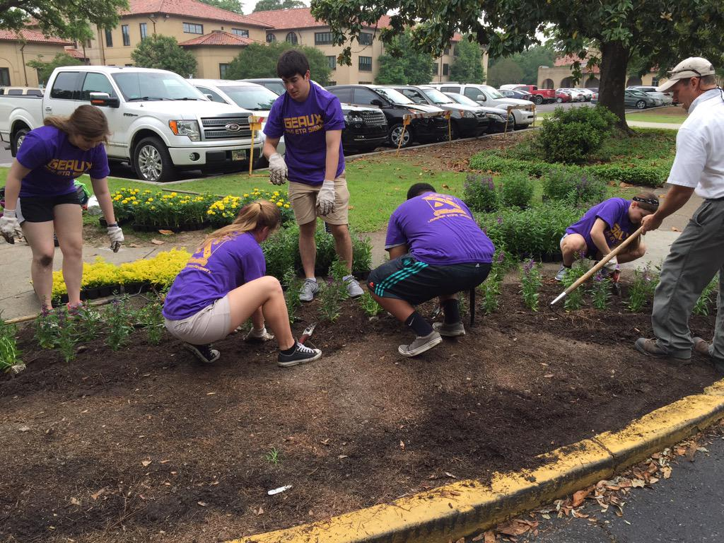 @LSUstudents planting during Spring Greening Day! Serving our beautiful campus #LSU #lplg @LSUAdmissions http://t.co/cwnPg2bn4f