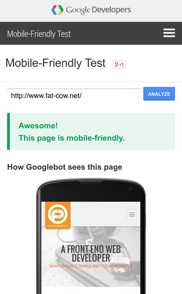 picture of Google Mobile-Friendly Test