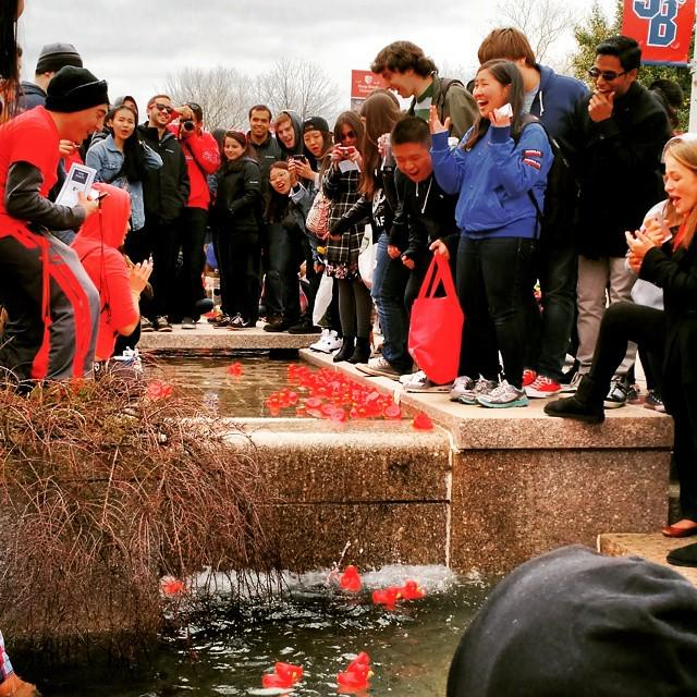 My first time experiecing the #StonyBrook #Earthstock rubber duck race. http://t.co/MUbvHZWtLI http://t.co/fIuoIU8R3r