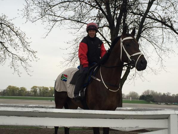 Mubtaahij at attention after his work at @Arlington_Park --> http://t.co/mfZijwXHRP