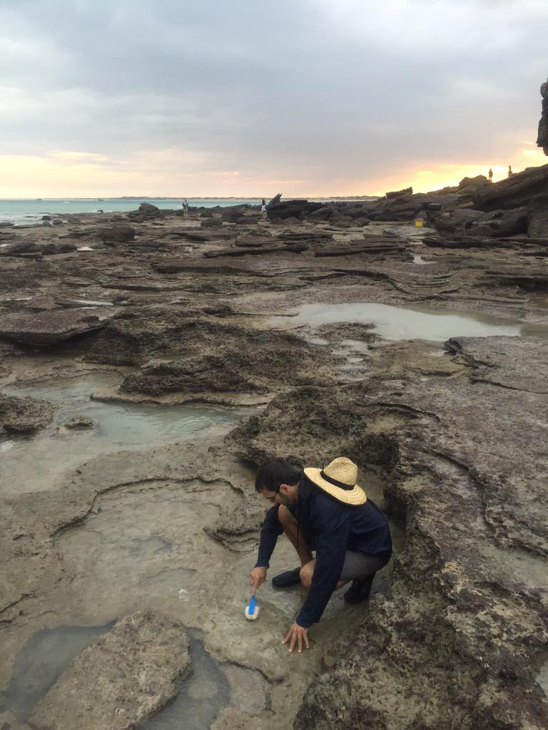 There's always more rock to scrub... @a_romilio carefully cleans a theropod track at Minyirr. #DinosaurCoast #UQ http://t.co/PjvDAZvNyy