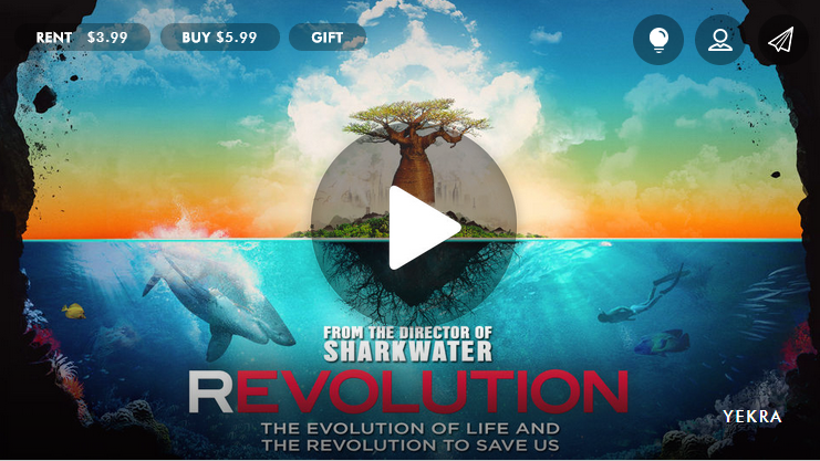 If you do one thing today, watch this video: http://t.co/S3IwOE4AEb @film_REVOLUTION http://t.co/zKolfm7JDn