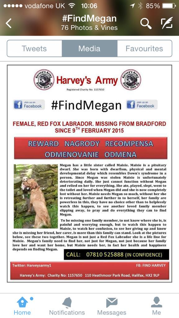 RT @joanneRACHAEL: @KimberlyKWyatt Please retweet & help find Megan #FindMegan 🐾❤️ http://t.co/wTtIZvwUDV