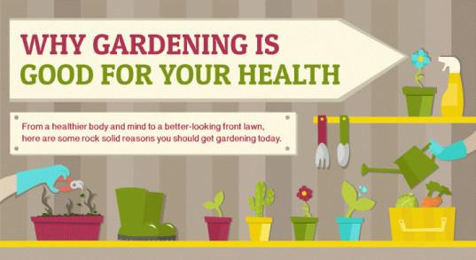 Infographic on how #gardening is surprisingly good for your health (no surprise to us!) http://t.co/G0MWALr4Az http://t.co/80UYY0vXBk