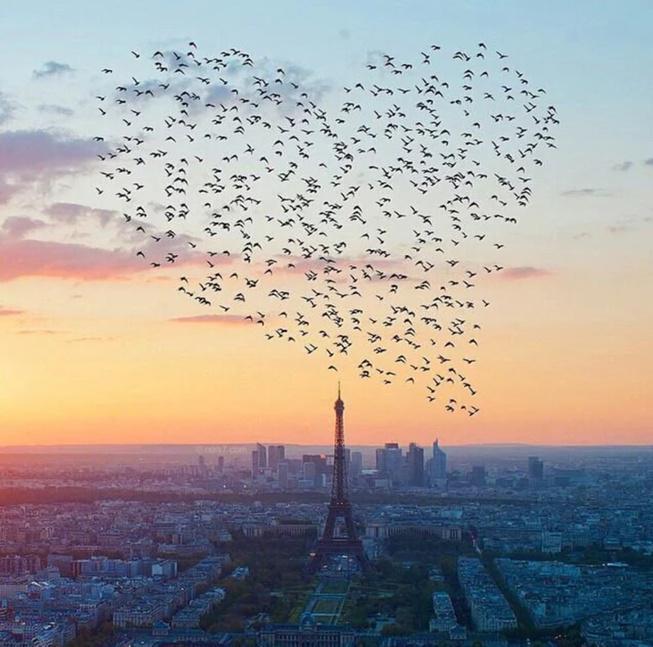 ------* SIEMPRE NOS QUEDARA PARIS *------ - Página 5 CDrE85AW8AAizqd