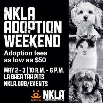 RT @BFAS_LA: Our #NKLA Adoption Weekend is this weekend! Thank you to our generou sponsor @PetSmartChariTs #SaveThemAll http://t.co/bkBBGtI…