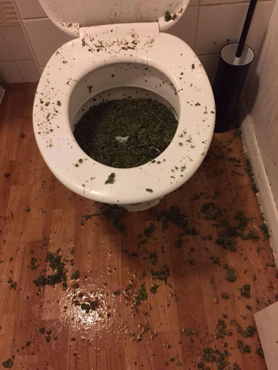 Officers in #Newham have seized what is believed to be cannabis after suspects tried to flush it down the toilet http://t.co/VC8NWDJrSt