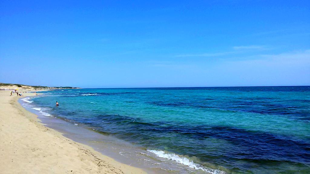 Squalo azzurro vicino alle spiagge a Campomarino e Porto Cesareo