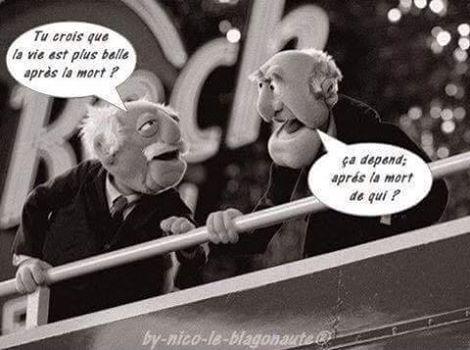 DOn François François Twitter DOn Jean Jean Twitter fbgyY76v
