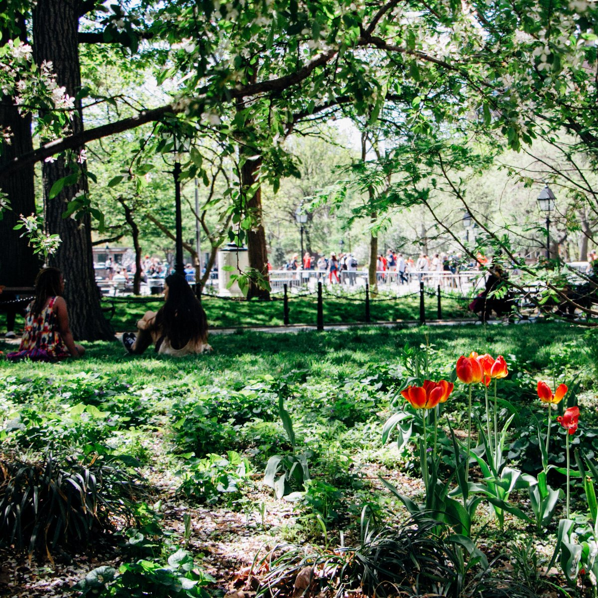 New York University On Twitter The Worlds Favorite Season Is Spring All Things Seem Possible In May
