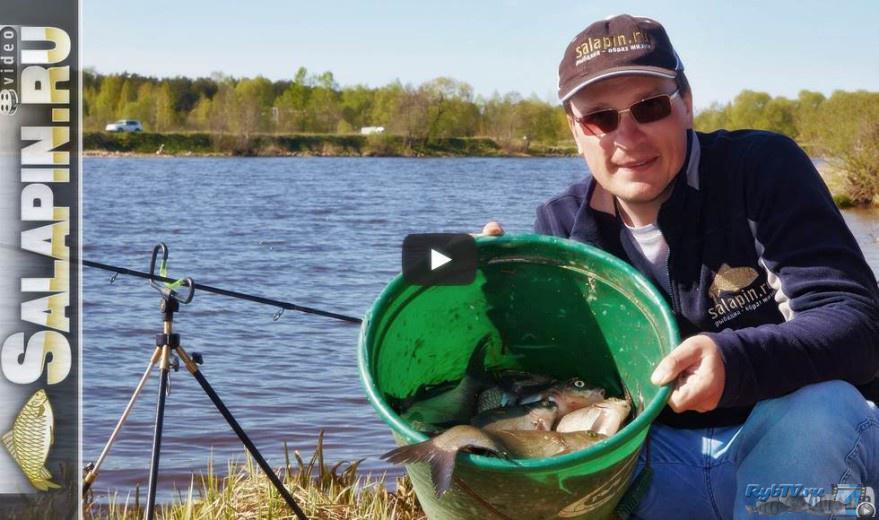 видео фидерная ловля 2016