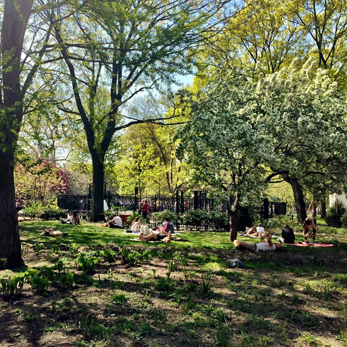 Such a beauty day in NYCizzle. @ Washington Square Park http://t.co/t6iBLOhleZ