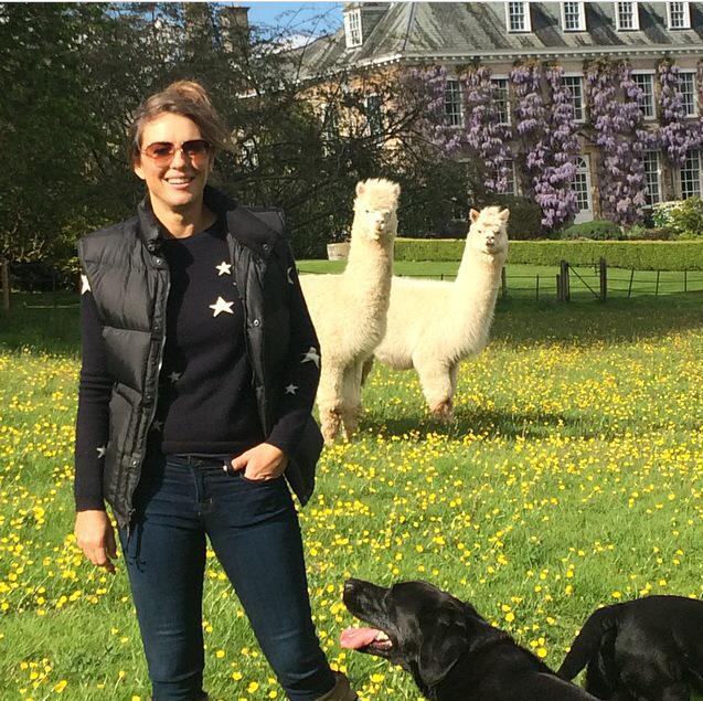 Photobombed by alpacas..... http://t.co/Q761CbfmT0