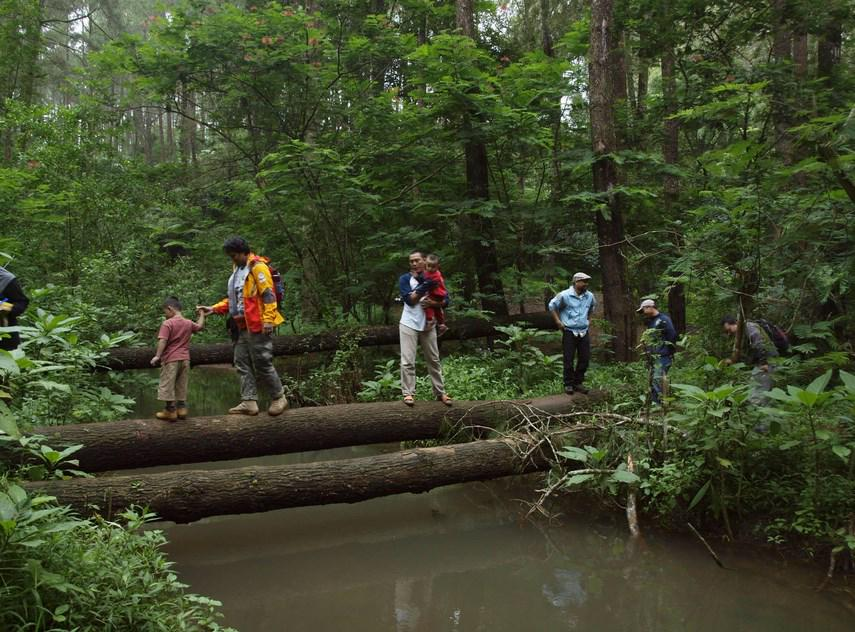 Bandung ᮘᮔ ᮓ Twitterren Taman Buru Gunung Masigit Kareumbi Wisata Alam Di Timur Bandung Wisatabdg Http T Co 93xg0joue1 Http T Co 9xb2one7ep